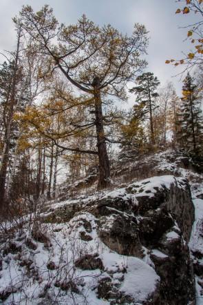 На горе Карандаш. Автор: Евгений Жаравин