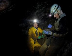 Пещера Дружба, Оленьи ручьи