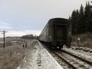 О.п.204 км станция у деревни Волыны. Автор: Татьяна Латышева