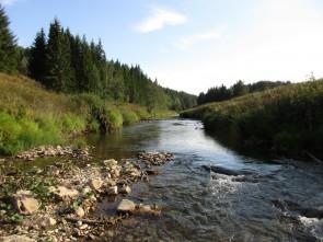 Кашка – горная река!. Автор: Дмитрий Латышев