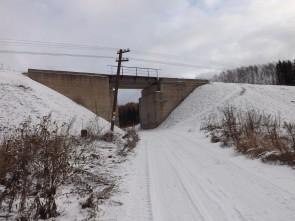 Мост по железной дороге у деревни Волыны.. Автор: Михаил Латышев