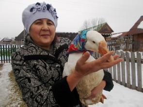 Праздник гуся в Аитково