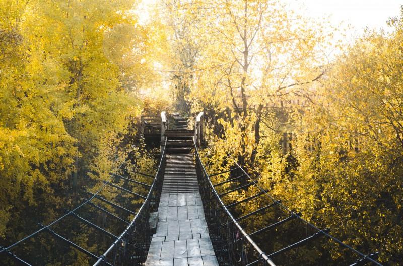 Мост в золотую осень. Автор: Юлия Залалова