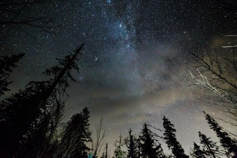 Звёздное небо. Автор: Владимир Шарф