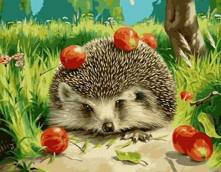Ежик и яблочки. Автор: не известен