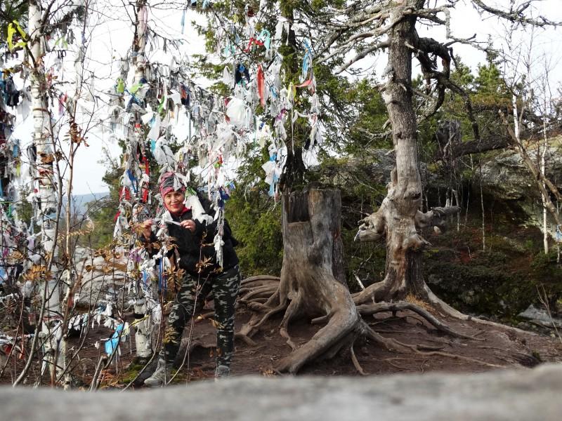 Ленточка на дереве - чтобы вернуться. Автор: Борис Калашников