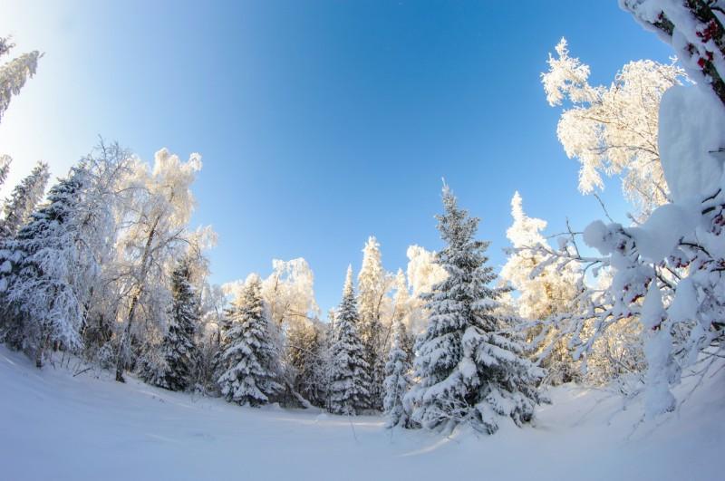 Таганайская зима. Автор: Константин Теличко