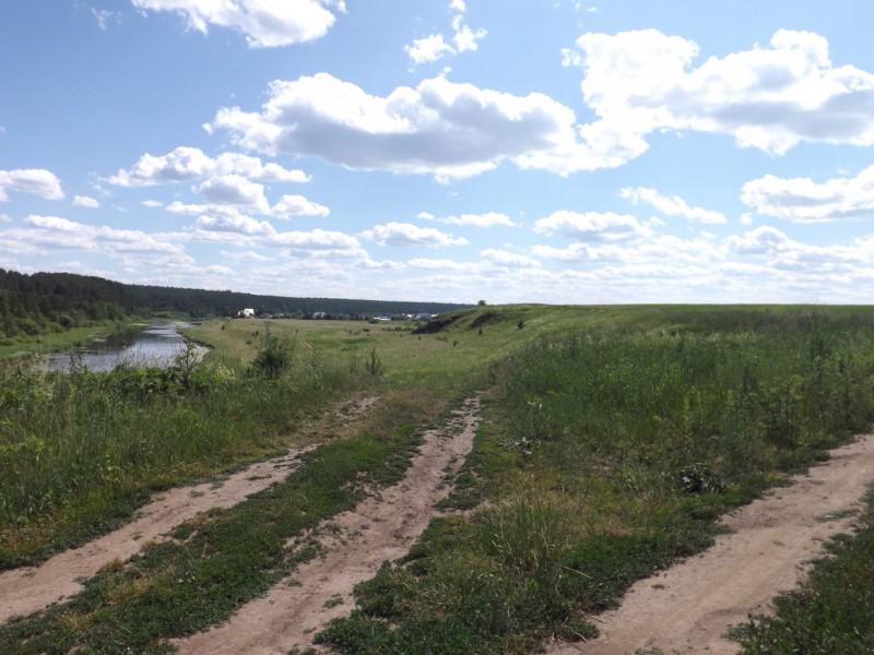 Широкая луговина за Нижним Селом была ничем иным, как плотбищем. Автор: Михаил Латышев