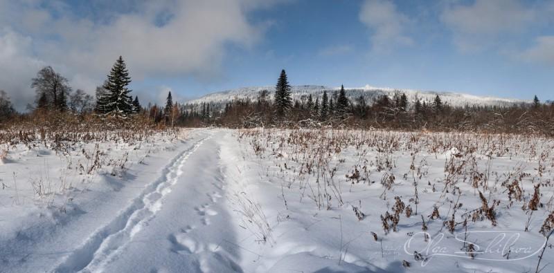 Экологическая тропа на хребет Зюруткуль. Автор: Ольга Шилова