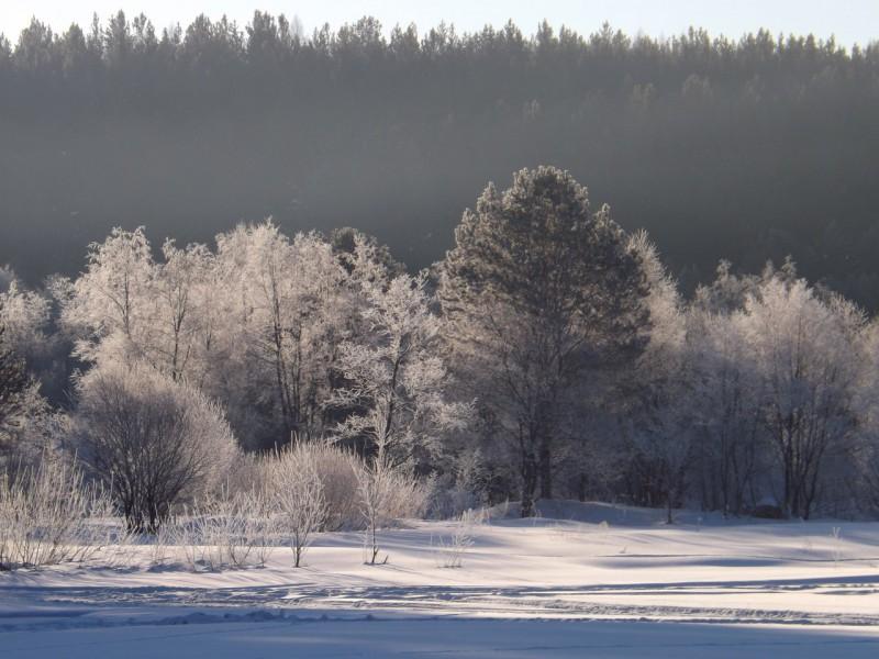 Даже зимой устье нашей Тетерихи на Чусовой обволакивает дымка. Автор: Михаил Латышев