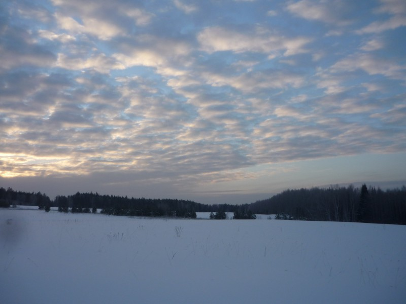 Зимнее утро в Волынах. Автор: Дмитрий Латышев