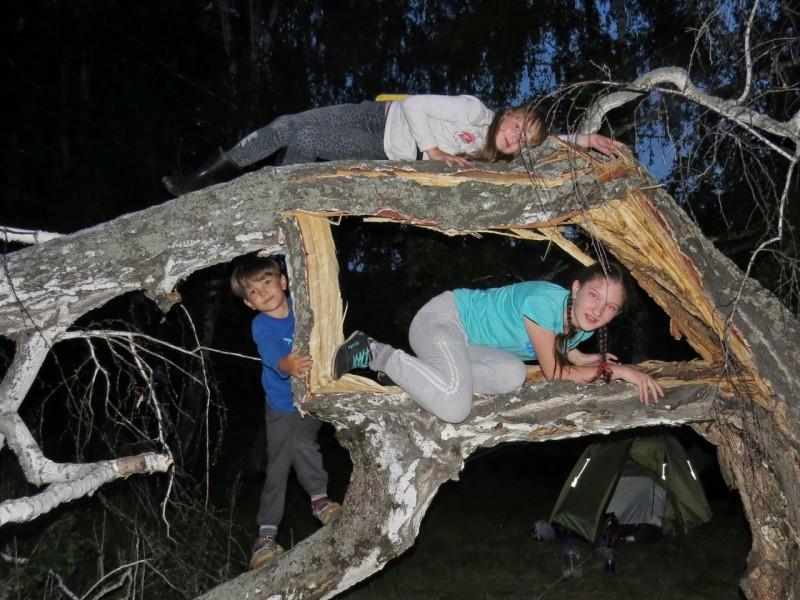 Развлечение детей на стоянке - коряга.. Автор: Людмила Столбовая