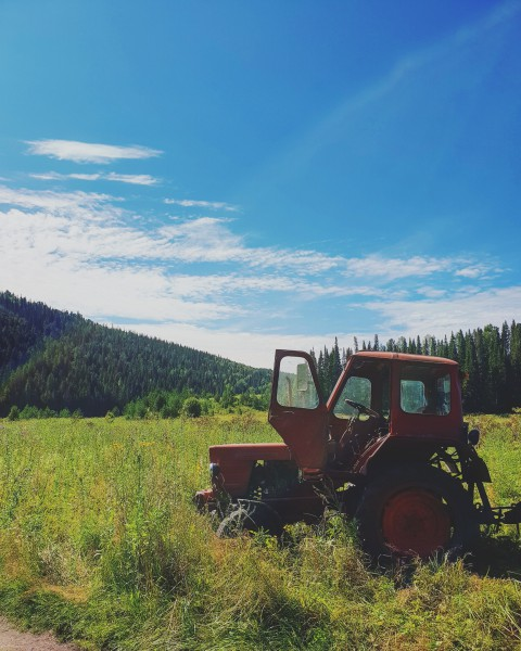 Утро начинается с трактора на поляне. Автор: Антон Осокин