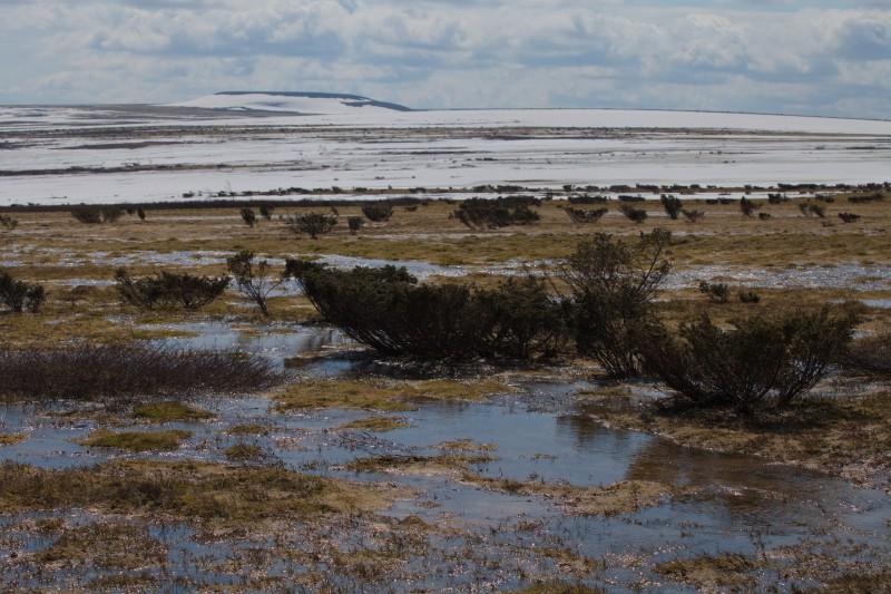 шлёпаем по плато, снега нет, местами только сплошной полосой бежит нам навстречу талая вода. Автор: Евгений Жаравин