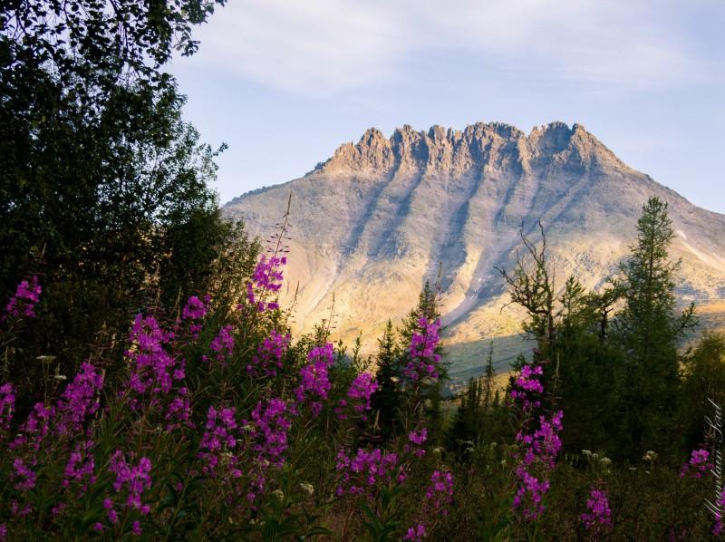 Гора Манарага. Автор: Анастасия Попельская