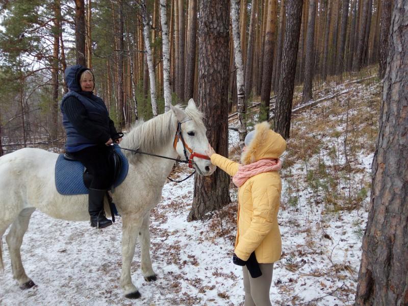 Белый конь в белом лесу. Автор: Евгений Юровских