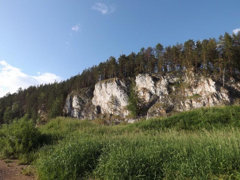 Боец Высокий достигает в высоту 30-ти метров. Автор: Дмитрий Латышев