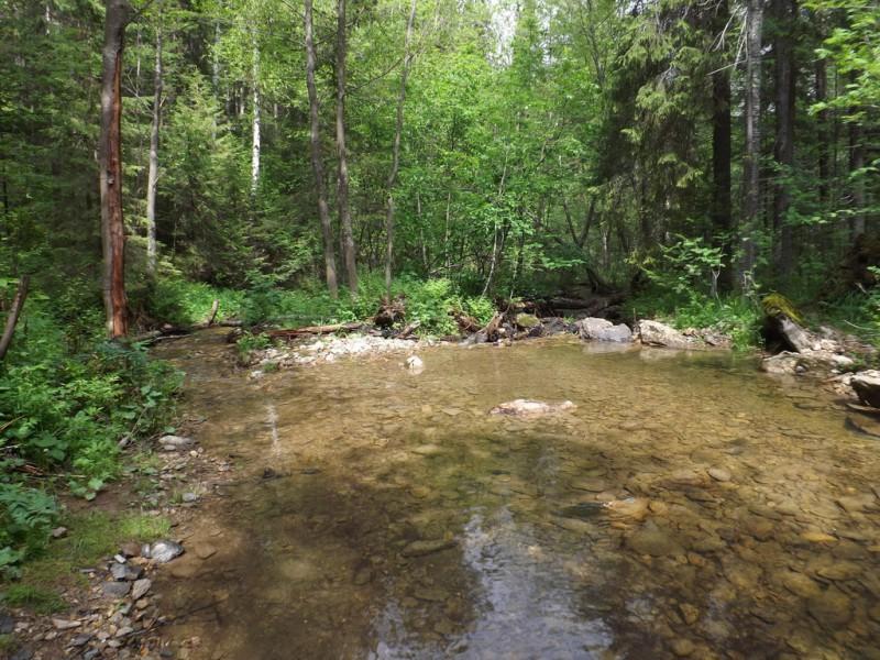 Река Малый Ик. Запруда и купель для крещения. Автор: Михаил Латышев