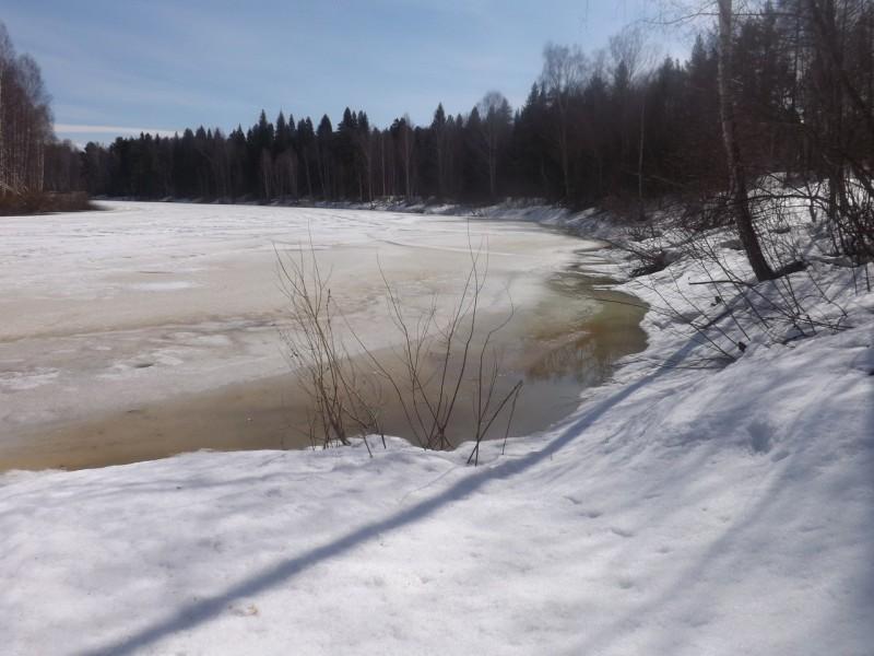У самого берега лёд подтаял, его фигурные закрайки блестели на солнце.. Автор: Татьяна Латышева