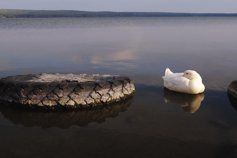Озеро Ургун. Автор: Ирина Аблеева