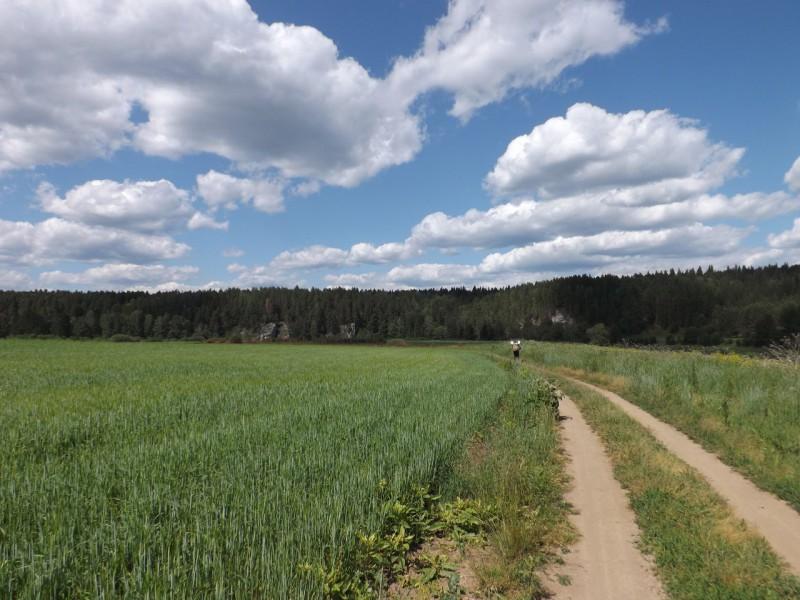 Впереди была излучина, где Чусовая поворачивает с севера на запад.. Автор: Дмитрий Латышев