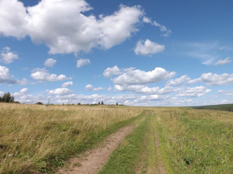 Старая дорога к Нижнему Селу идёт от деревни Каменки.. Автор: Михаил Латышев